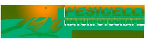 Pesicelli-Logo